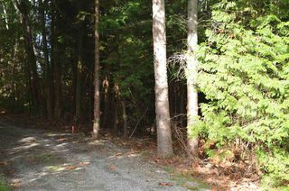 Photo 3: LOT 20 N GALE Avenue in Sechelt: Sechelt District Land for sale (Sunshine Coast)  : MLS®# R2507552