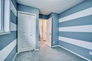 Photo 18: 123 Sagewood Grove SW: Airdrie Detached for sale : MLS®# A1044678