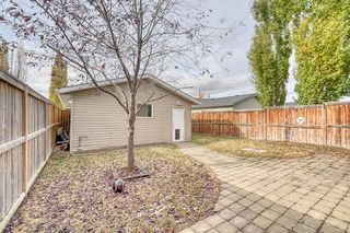 Photo 29: 123 Sagewood Grove SW: Airdrie Detached for sale : MLS®# A1044678