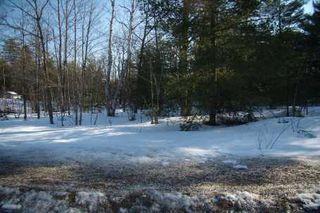Photo 2: 7650 Birch Drive in Ramara: Freehold for sale (X17: ANTEN MILLS)  : MLS®# X1722198