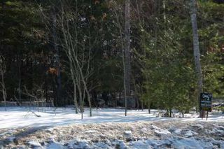 Photo 1: 7650 Birch Drive in Ramara: Freehold for sale (X17: ANTEN MILLS)  : MLS®# X1722198