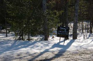 Photo 9: 7650 Birch Drive in Ramara: Freehold for sale (X17: ANTEN MILLS)  : MLS®# X1722198