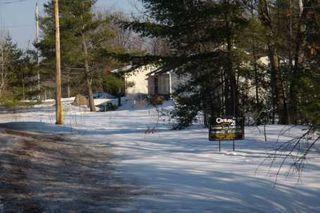 Photo 7: 7650 Birch Drive in Ramara: Freehold for sale (X17: ANTEN MILLS)  : MLS®# X1722198