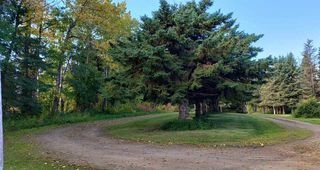 Photo 25: 232038 TWP RD 470: Rural Wetaskiwin County House for sale : MLS®# E4173795