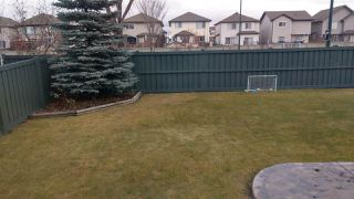 Photo 29: 1021 RUTHERFORD Place in Edmonton: Zone 55 House for sale : MLS®# E4179701
