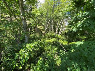 Photo 40: 3860 Graceland Dr in Metchosin: Me Albert Head House for sale : MLS®# 840985