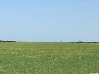 Photo 7: McNally Acreage in Regina: Lot/Land for sale : MLS®# SK826998