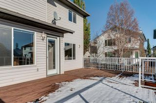 Photo 29: 125 Coventry Crescent NE in Calgary: Coventry Hills Detached for sale : MLS®# A1042180