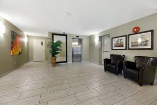 Photo 3: 713 3 PERRON Street: St. Albert Condo for sale : MLS®# E4220654
