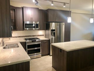 Photo 3: B422 20716 WILLOUGHBY TOWN CENTRE Drive in Langley: Willoughby Heights Condo for sale : MLS®# R2402403