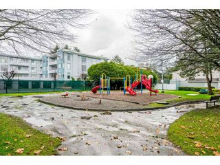 "Photo 19: 10 20303 53 Avenue in Langley: Langley City Townhouse for sale in ""McMillan Place"" : MLS®# R2419937"