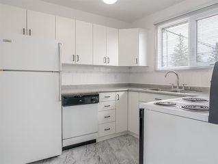 Photo 7: 230 Carson Bay in Winnipeg: Crestview Residential for sale (5H)  : MLS®# 202007601