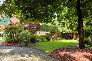 Photo 9: 21336 DOUGLAS AVENUE Avenue in Maple Ridge: West Central House for sale : MLS®# R2456949