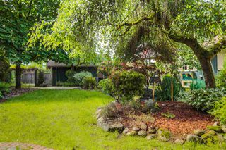 Photo 10: 21336 DOUGLAS AVENUE Avenue in Maple Ridge: West Central House for sale : MLS®# R2456949