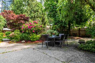Photo 12: 21336 DOUGLAS AVENUE Avenue in Maple Ridge: West Central House for sale : MLS®# R2456949