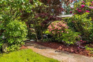 Photo 11: 21336 DOUGLAS AVENUE Avenue in Maple Ridge: West Central House for sale : MLS®# R2456949