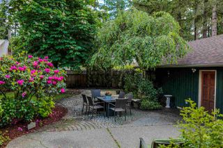 Photo 7: 21336 DOUGLAS AVENUE Avenue in Maple Ridge: West Central House for sale : MLS®# R2456949