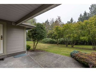 "Photo 25: 25 12071 232B Street in Maple Ridge: East Central Townhouse for sale in ""CREEKSIDE GLEN"" : MLS®# R2498274"