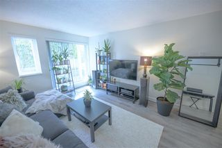 "Photo 1: 103 9890 MANCHESTER Drive in Burnaby: Cariboo Condo for sale in ""Brookside Court"" (Burnaby North)  : MLS®# R2509254"