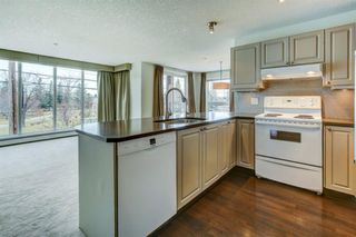 Photo 5: 206 603 7 Avenue NE in Calgary: Renfrew Apartment for sale : MLS®# A1047643