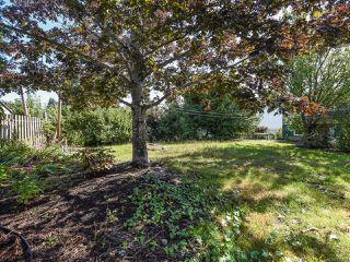 Photo 25: 2070 Cooke Ave in COMOX: CV Comox (Town of) House for sale (Comox Valley)  : MLS®# 825428