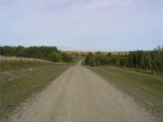 Photo 7: 242042 TWP RD 264: Rural Wheatland County Detached for sale : MLS®# C4272839