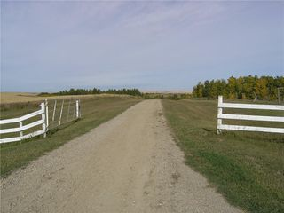 Photo 6: 242042 TWP RD 264: Rural Wheatland County Detached for sale : MLS®# C4272839