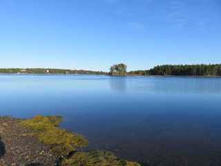 Main Photo: Lot Z Highway 332 in First South: 405-Lunenburg County Vacant Land for sale (South Shore)  : MLS®# 202008458