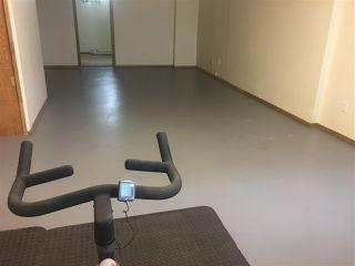 Photo 25: 17216 77 Avenue in Edmonton: Zone 20 House for sale : MLS®# E4198698