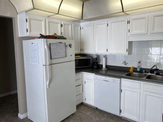 Photo 12: 17216 77 Avenue in Edmonton: Zone 20 House for sale : MLS®# E4198698