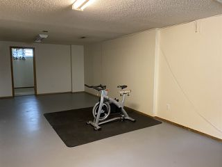 Photo 31: 17216 77 Avenue in Edmonton: Zone 20 House for sale : MLS®# E4198698