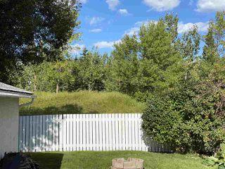 Photo 33: 17216 77 Avenue in Edmonton: Zone 20 House for sale : MLS®# E4198698