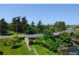 Photo 11: 403 1085 Tillicum Rd in VICTORIA: Es Kinsmen Park Condo Apartment for sale (Esquimalt)  : MLS®# 504110