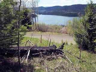 Main Photo: 21 COTTAGE Lane in Bridge Lake: Bridge Lake/Sheridan Lake Land for sale (100 Mile House (Zone 10))  : MLS®# R2424889