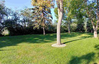 Photo 43: 30 500 LESSARD Drive in Edmonton: Zone 20 Townhouse for sale : MLS®# E4186920