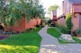 Photo 40: 30 500 LESSARD Drive in Edmonton: Zone 20 Townhouse for sale : MLS®# E4186920