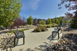 Photo 30: 321 400 Silver Berry Road in Edmonton: Zone 30 Condo for sale : MLS®# E4189761