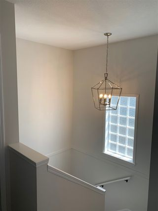 Photo 14: 160 MICHIGAN Key: Devon House for sale : MLS®# E4199302