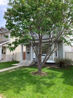 Photo 19: 160 MICHIGAN Key: Devon House for sale : MLS®# E4199302