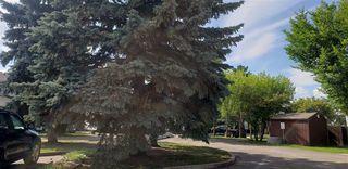 Photo 8: 10317 172 Avenue in Edmonton: Zone 27 House Half Duplex for sale : MLS®# E4169498