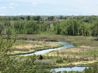 Photo 50: 974 LAKE PLACID Drive SE in Calgary: Lake Bonavista Detached for sale : MLS®# C4299089