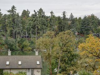 Photo 29: 509 69 W Gorge Rd in Saanich: SW Gorge Condo for sale (Saanich West)  : MLS®# 831324