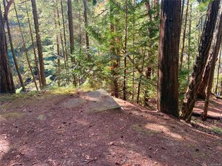 Photo 6: Lt 3 Taylor Bay Rd in : Isl Gabriola Island Land for sale (Islands)  : MLS®# 858028