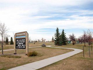 Photo 30: 396 HOLLICK-KENYON Road in Edmonton: Zone 03 House for sale : MLS®# E4217912