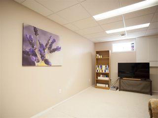 Photo 22: 396 HOLLICK-KENYON Road in Edmonton: Zone 03 House for sale : MLS®# E4217912