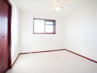 Photo 10: 396 HOLLICK-KENYON Road in Edmonton: Zone 03 House for sale : MLS®# E4217912