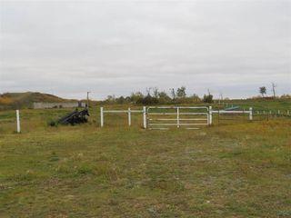 Photo 10: 421076 RR 95: Rural Provost M.D. House for sale : MLS®# E4218560