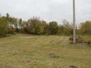 Photo 4: 421076 RR 95: Rural Provost M.D. House for sale : MLS®# E4218560
