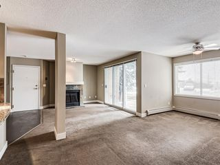 Photo 21: 1 203 Village Terrace SW in Calgary: Patterson Apartment for sale : MLS®# A1050271