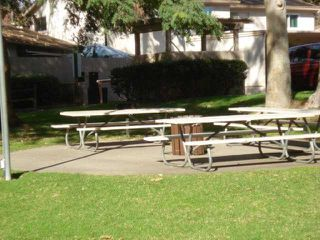 Photo 13: UNIVERSITY CITY Condo for sale : 2 bedrooms : 4208 Camino Ticino in San Diego